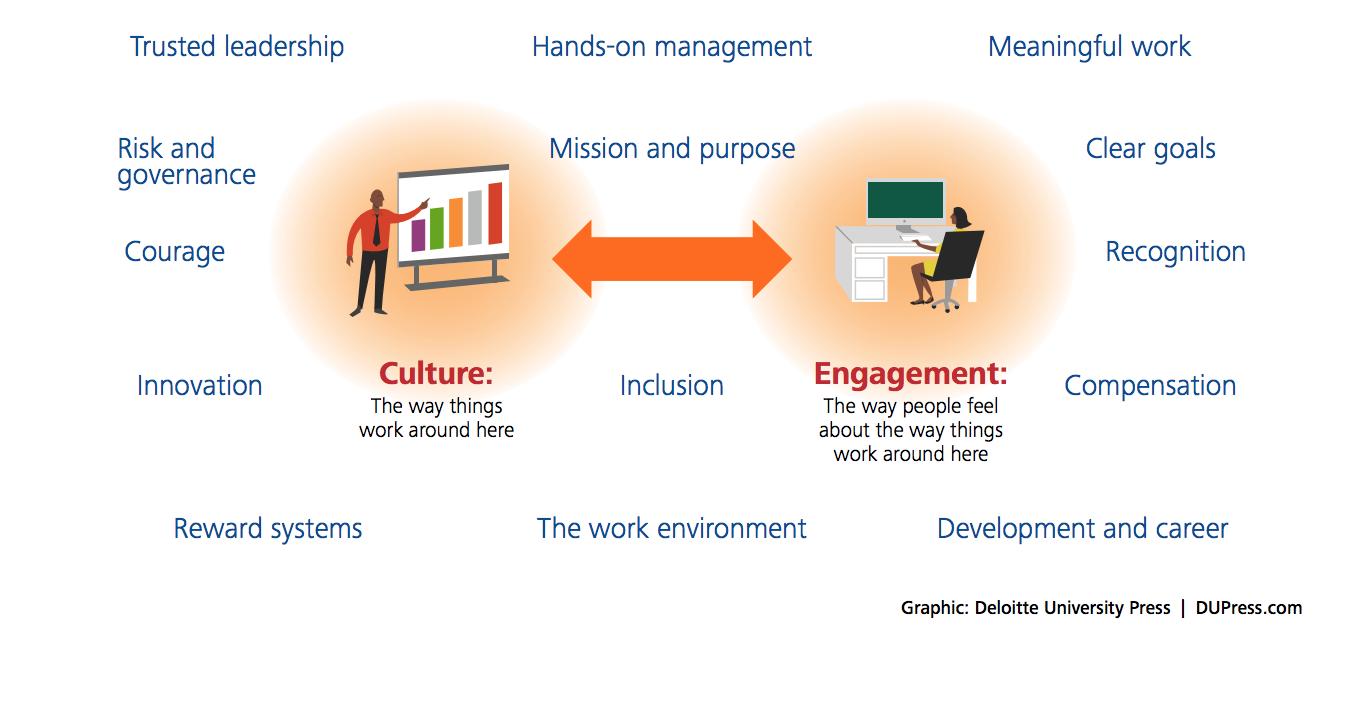 Bersin-Culture-Engagement