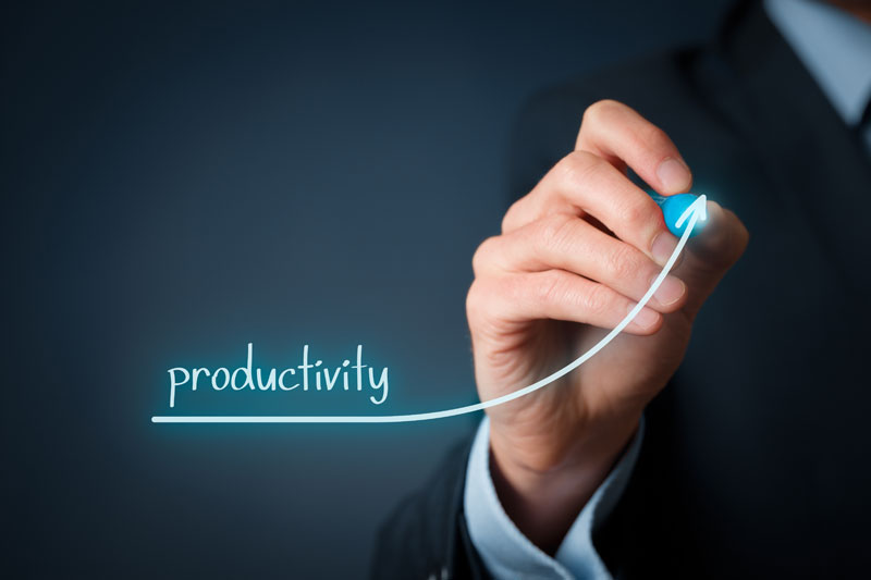 How is your company measuring employee productivity?